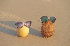 L'orange a coupé le melon avec des graines intérieures et une noix de coco brune avec chanté photographie stock