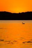 L'orange de coucher du soleil a peint le ciel Photographie stock