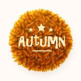 L'orange ou le jaune laisse le cadre de cercle d'isolement sur le fond blanc Élément floral de décoration Automne ou concept de c Photo libre de droits