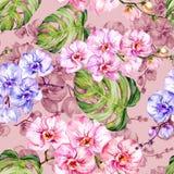 L'orchidée bleue et rose fleurit et le monstera part Configuration florale sans joint Peinture d'aquarelle Illustration tirée par illustration stock