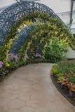 L'orchidée et l'arbre jaunes de jardin percent un tunnel le passage couvert en parc Photographie stock