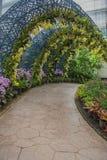 L'orchidée et l'arbre jaunes de jardin percent un tunnel le passage couvert en parc Photos libres de droits