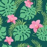L'orchidée tropicale fleurit le modèle sans couture de répétition Images libres de droits