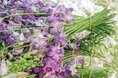 L'orchidea porpora fresca fiorisce il mazzo Fotografia Stock Libera da Diritti