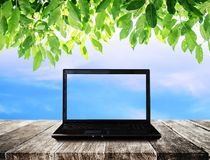 L'ordinateur portable sur la table en bois avec le ciel bleu et le vert part du fond Photo libre de droits
