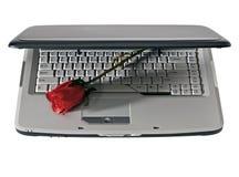 L'ordinateur portatif et le rouge se sont levés image libre de droits