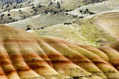 L'Oregon ha verniciato le colline fotografia stock