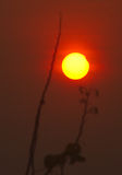 L'origine de l'éclipse de Sun Image libre de droits