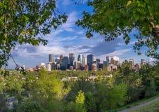 L'orizzonte di Calgary Fotografie Stock