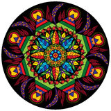 L'ornamento decorativo circolare della mandala variopinta con i fiori e le foglie nello stile etnico vector l'illustrazione Fotografie Stock