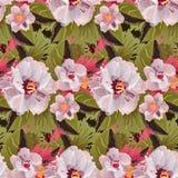 L'ornement sans couture avec les feuilles exotiques fleurit le fond abstrait Photographie stock libre de droits