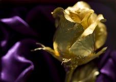 L'oro è aumentato Fotografie Stock