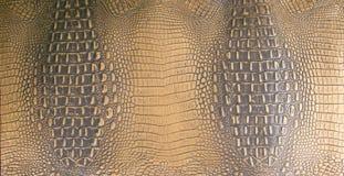 L'oro/Brown scuro ha impresso la struttura di cuoio dell'alligatore Fotografie Stock Libere da Diritti