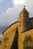 L'oro dei secoli (una torretta di Pskov Kremlin) Immagini Stock Libere da Diritti