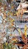 L'oro e l'argento del fuoco selettivo star le decorazioni con la scintilla Fotografie Stock Libere da Diritti