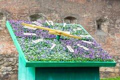 L'orologio del fiore a Leopoli mostra il time_ esatto fotografia stock libera da diritti