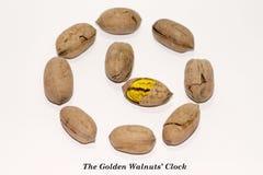 L'orologio delle noci dorate Immagini Stock Libere da Diritti