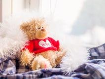 L'orsacchiotto dell'orso fotografie stock