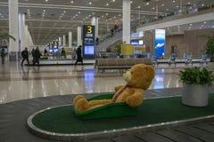 L'orsacchiotto nella scatola sul trasportatore del bagaglio all'aeroporto internazionale di Shanghai Pudong fotografia stock libera da diritti