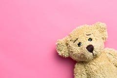 L'orsacchiotto riguarda il fondo rosa Fotografie Stock