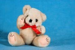 L'orsacchiotto riguarda una coperta blu Fotografia Stock