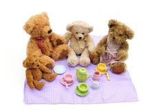 L'orsacchiotto sopporta il picnic fotografie stock libere da diritti