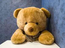 L'orsacchiotto sveglio si siede sulla sedia davanti al tavolo da pranzo Faccialo sembrare come il piatto favorito aspettante fotografie stock libere da diritti
