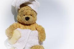 L'orso è in bagno Immagini Stock Libere da Diritti
