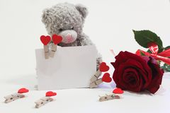 L'orso, biglietto di S. Valentino ed è aumentato su un fondo bianco Immagine Stock