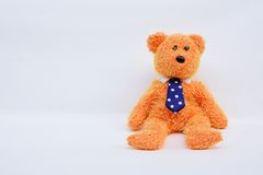 L'orso dell'orsacchiotto ha isolato Immagini Stock