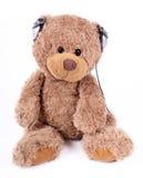 L'orso gradice la musica Immagine Stock