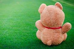 L'orso si siede sull'erba Fotografia Stock