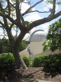 L'osservatorio all'interno dei motivi al giardino botanico nella folaga-tha di Mt, Brisbane, Australia fotografia stock libera da diritti