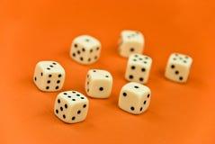 L'osso al gioco sui precedenti arancioni Fotografia Stock