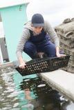L'ostricoltore pulisce la regione Francia del darcachon di bassin dei prodotti Immagini Stock Libere da Diritti