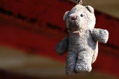 L'ours brun sale était accrocher superficiel par les agents Images libres de droits