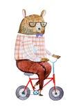 L'ours de bande dessinée s'est habillé dans des vêtements de hippie montant un vélo dessiné sur le livre blanc avec la technique  illustration de vecteur