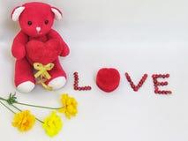 L'ours de nounours rouge reposent la prise que le coeur rouge avec le lettrage d'AMOUR a faite des graines rouges et de la boîte  Image stock