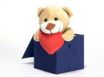 L'ours regarde hors du cadre Photos stock