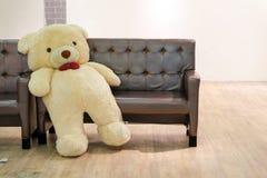 l'ours se penchent de retour du banc de sofa dans le plancher de salon et en bois photographie stock