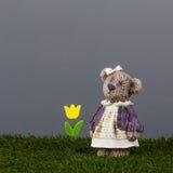 L'ours simple naïf avec une tulipe attend son ami Image stock
