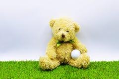 L'ours tient la boule de golf se repose sur le cours vert Photo stock