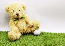 L'ours tient la boule de golf se repose sur le cours vert Image stock