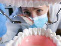 L'outil professionnel de stomatologie de participation femelle de dentiste et le pointage aux dents modèlent concept dentaire d'h photo libre de droits