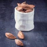 L'ovatum de Canarium, généralement connu sous le nom de pili est des espèces de tropical Image libre de droits