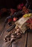 L'ovatum de Canarium, généralement connu sous le nom de pili est des espèces de tropical Images libres de droits