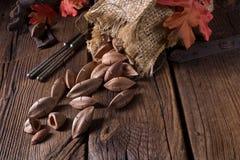 L'ovatum de Canarium, généralement connu sous le nom de pili est des espèces de tropical Image stock