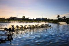 l'oxygène d'aération pour des étangs de crevette photographie stock