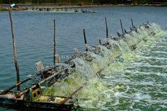 L'oxygène de produit de turbine de l'eau pour la ferme de crevette Photos stock