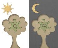 L'oxygène et anhydride carbonique produits par arbre Photos stock